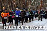 FALENICA 2018/2019