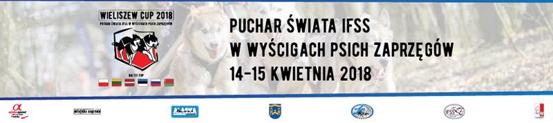 Wieliszew - zaprzęgi 2018 - TOP